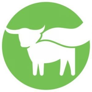 Beyond Meat company logo